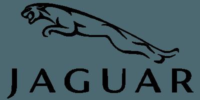 عطر جگوار-ادکلن جگوار-Jaguar