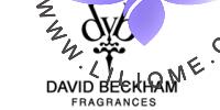 David Beckham-دیوید بکهام