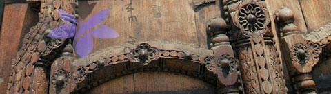 گروه بویایی شرقی چوبی (Oriental Woody)