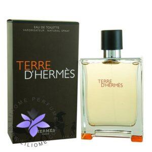 عطر ادکلن هرمس تق هرمس-Hermes Terre d