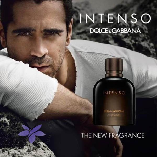 عطر ادکلن دی اند جی دلچه گابانا پور هوم اینتنسو-Dolce Gabbana Pour Homme Intenso