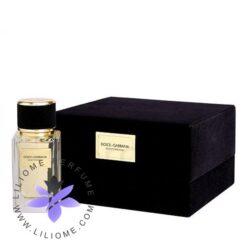 عطر ادکلن دی اند جی دلچه گابانا ولوت پچولی-Dolce Gabbana Velvet Patchouli