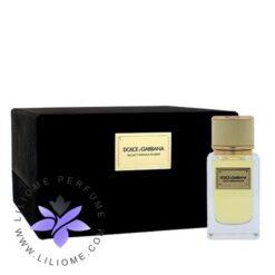 عطر ادکلن دلچه گابانا ولوت میموسا بلوم-Dolce Gabbana Velvet Mimosa Bloom
