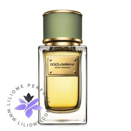 عطر ادکلن دی اند جی دلچه گابانا ولوت برگامت-Dolce Gabbana Velvet Bergamot