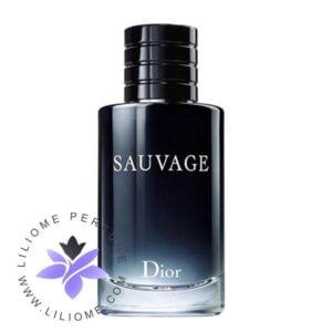 عطر ادکلن دیور ساواج-ساوج-ساواژ-Dior Sauvage 200 ml