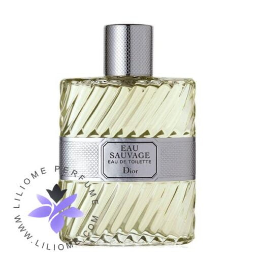 عطر ادکلن دیور او ساواج-Dior Eau Sauvage