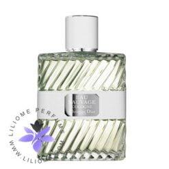 عطر ادکلن دیور او ساواج کلون-Dior Eau Sauvage Cologne