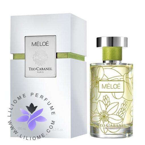 عطر ادکلن تئو کابانل ملو-Teo Cabanel Meloe