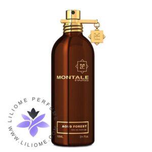 عطر ادکلن مونتاله عود فورست-Montale Aoud Forest