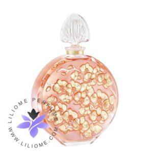 عطر ادکلن لالیک د لالیک ارکیده کریستال فلاکون-Lalique de Lalique Orchidee Crystal Flacon