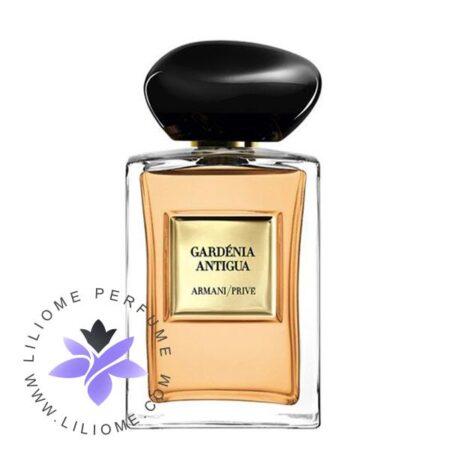 عطر ادکلن جورجیو آرمانی گاردنیا آنتیگوا-Giorgio Armani Gardénia Antigua