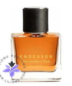عطر ادکلن ابرکرومبی اند فیچ اندیور | Abercrombie & Fitch Endeavor