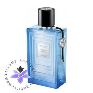 عطر ادکلن لالیک گلوریوس ایندیگو آبی | Lalique Glorious Indigo