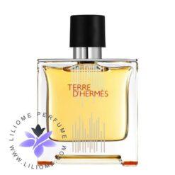 عطر ادکلن هرمس تق هرمس فلاکون اچ 2021 پارفوم | Hermes Terre d'Hermes Flacon H 2021 Parfum
